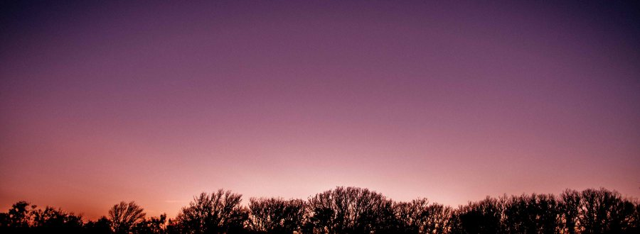 horizontal panorama of trees silhouetted against sky at dusk