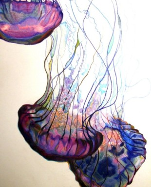 beautiful colored pencil drawing of jellyfish in blues and purples