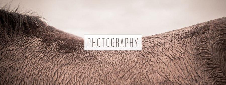 ARTWORK_HEADERS_PHOTO