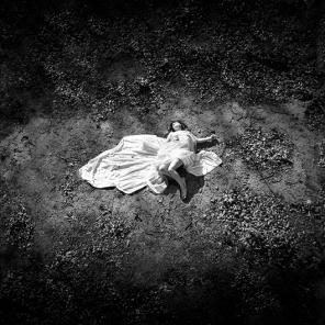 Week 2 - The Fallen